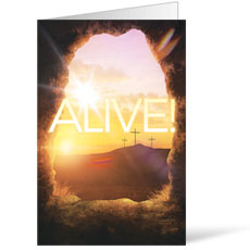 Alive Sunrise Tomb