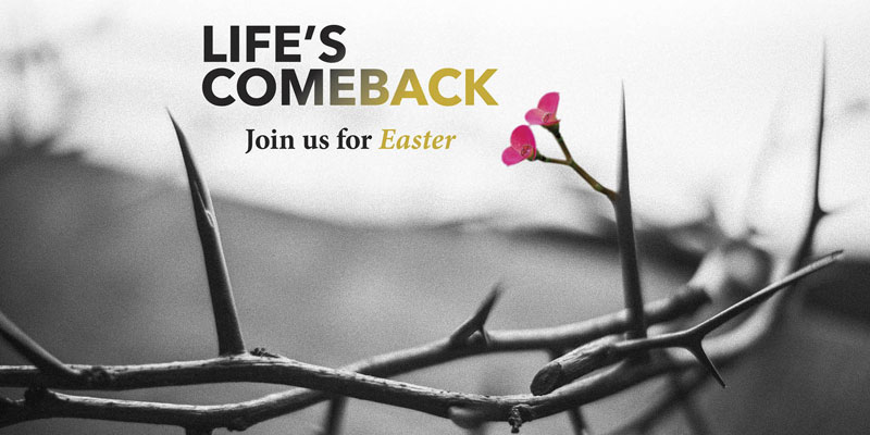 Church Postcards, Easter, Life's Comeback, 5.5 x 11